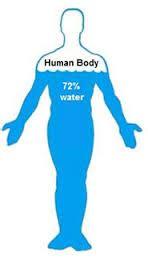 alimenti aumentano il metabolismo basale marzo 2014 nutrizionista valdarno dieta nutrizione