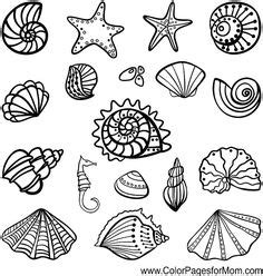 printable zentangle legend coloring stencils drawing on pinterest mandala