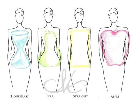 body types and shapes midwest fashionista what body type are you