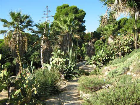 giardino botanico cagliari l orto botanico di cagliari viaggi vacanze e turismo