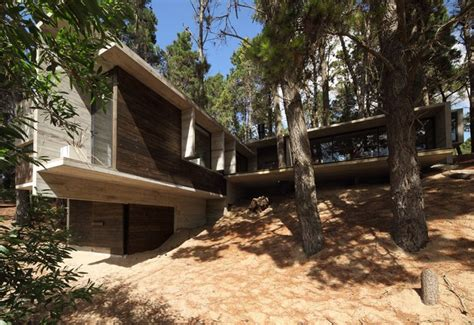 260515 in the forest hangs a concrete house bb in the woods