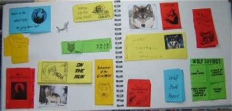 How Can I Decorate My Home All About Lapbooks