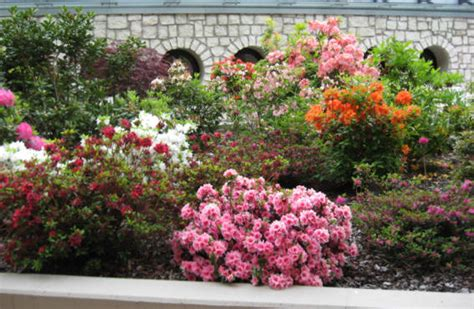 giardini in fiore dallap 232 verde impianti arco giardino in fiore