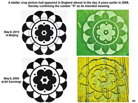 lotus flower number of petals the ferry disaster of june 1 2015 were any