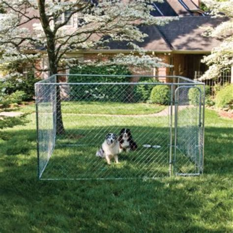 tsc kennel pet safe do it yourself kennel 10 ft w x 10 ft l x 6 ft h for out here