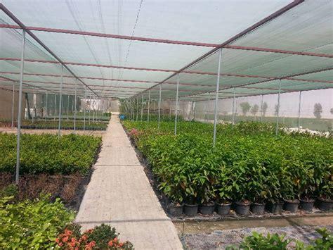 Landscape Architect Qatar Al Naqi Landscape Company W L L Qatar Doha Landscape