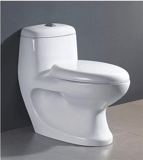 Closet Toilet by China One Toilet Hm 2009 China Toilet Water Closet
