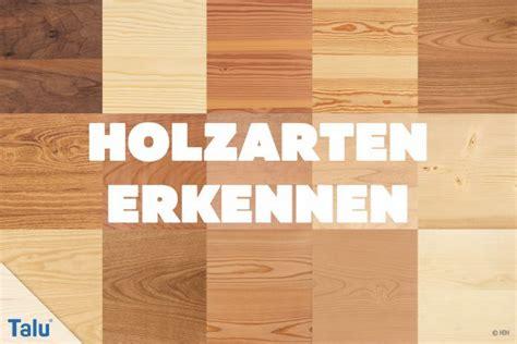 holzarten erkennen 220 bersicht mit 33 weich und - Holzmaserung Erkennen