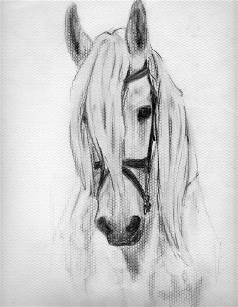 imagenes a lapiz de caballos 11 dibujos a l 225 piz de caballos dibujos a lapiz