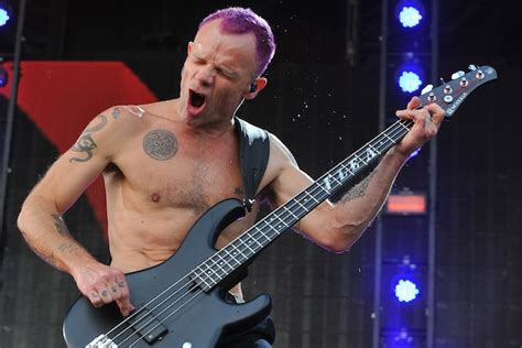 Flea Chili Peppers Bassist Loses Home In Malibu by What Is The Best Beginner Guitar