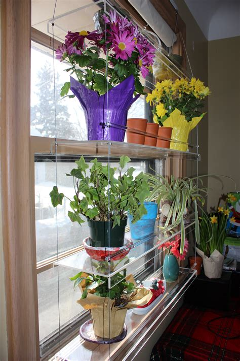 indoor window garden beautiful views hanging indoor window garden review