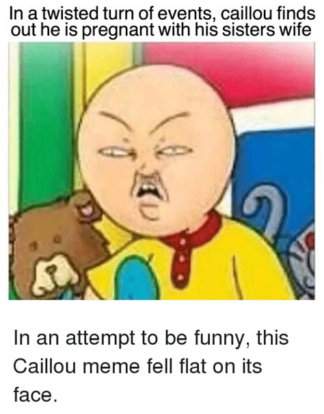 Funny Pic Meme - in a twisted turn of events caillou finds out he is