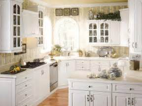 decorating ideas for kitchen cabinets modern kitchen cabinet design ideas beautiful homes design