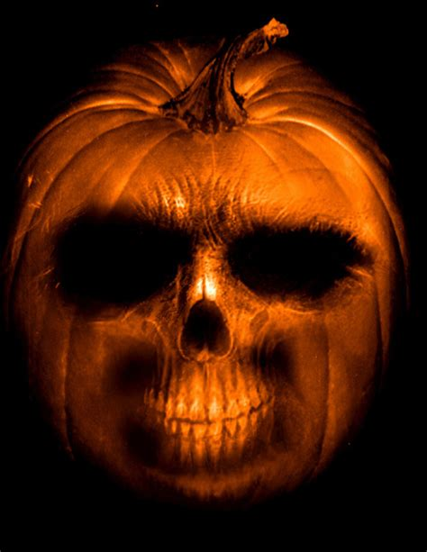pumpkin skull pumpkin skull pictures photos and images for