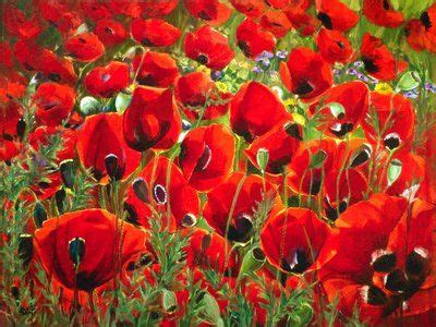 google images poppies poppies google search garden pinterest poppies