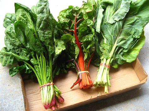 gren keaf produce types 10 foods for your winter detox smashing tops