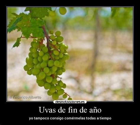 imagenes graciosas uvas uvas de fin de a 241 o desmotivaciones