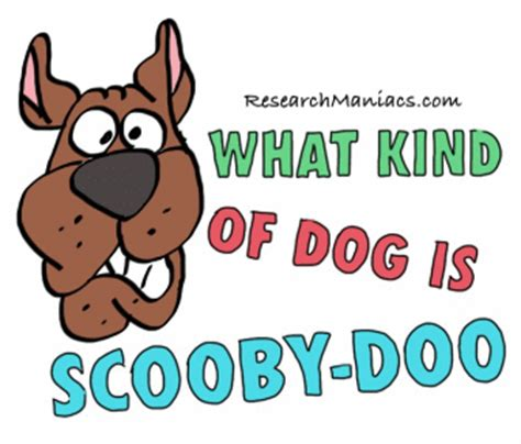 what of is scooby what of is scooby doo