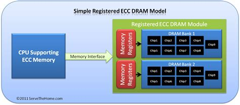 what is the difference between office 2011 home and image gallery ecc ram
