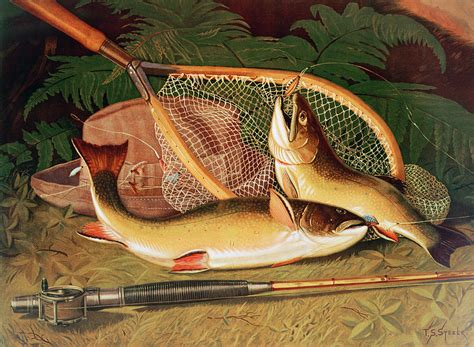 Salmon Shower Curtain Still Life With A Salmon Trout A Rod And A Net Photograph