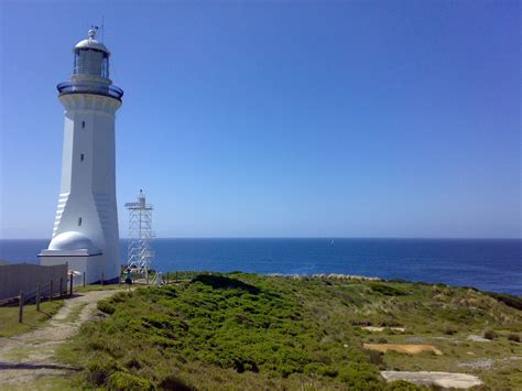 light house file green cape lighthouse and skeletal jpg
