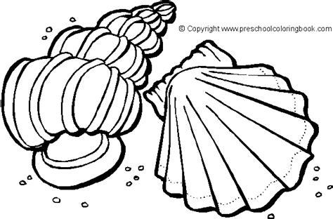 seashell coloring pages preschool www preschoolcoloringbook com ocean life coloring page