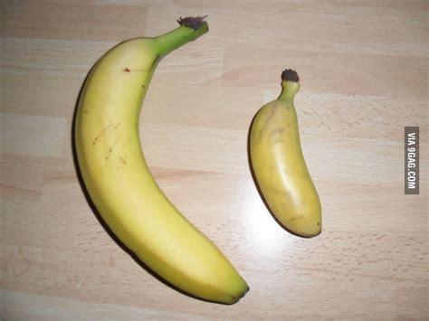 tiny banana image gallery small banana
