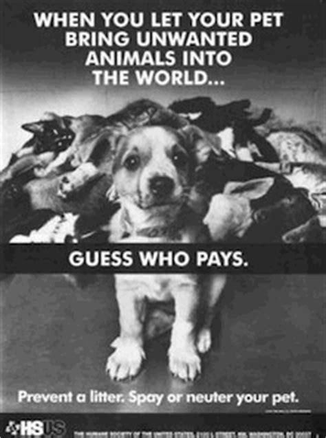 What Works: Spay/Neuter Advertising