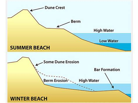Mild Winter 2017 by Science Of The Shore A Tale Of Two Beaches Winter