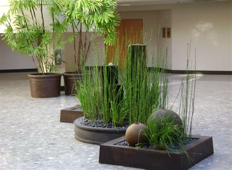 interior plant design home design