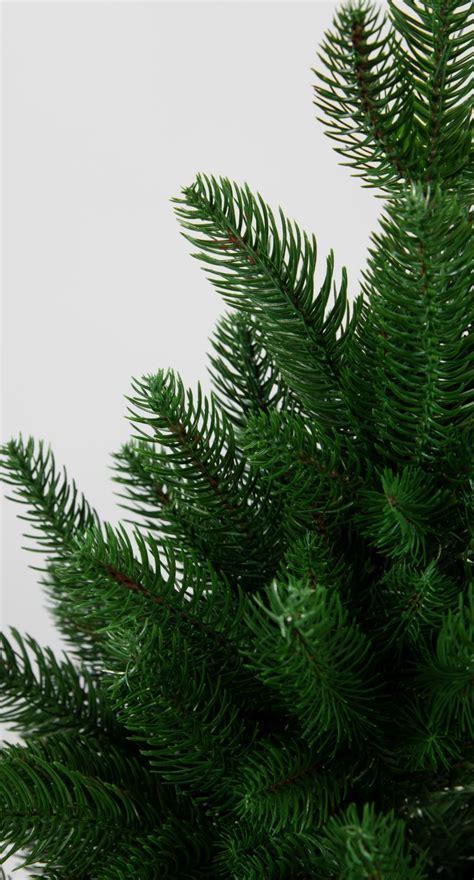 kunststoff weihnachtsbaum nordmanntanne 180cm k 252 nstlicher weihnachtsbaum tannenbaum