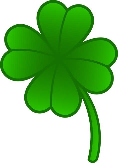 four leaf clover photos cliparts co