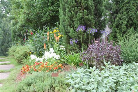 easy herb and vegetable garden designs hgtv