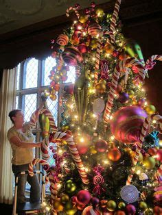 osh fresh christmas trees poinsettia tree at longwood gardens kennett square pa poinsettia