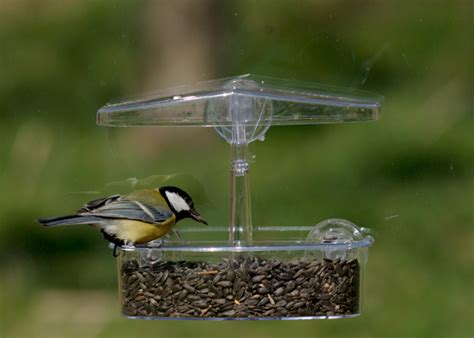 buy window observer bird feeder