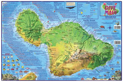 map of the valley isle 9th edition reference maps update tourist map of map 800600
