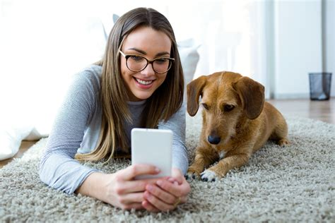 My Apartment Pets Moving In With Your Pet Tips For Apartment With Dogs