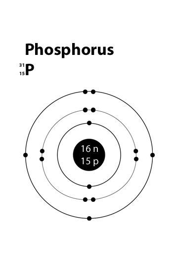 bohr diagram for phosphorus simple atomic structure of phosphorus name