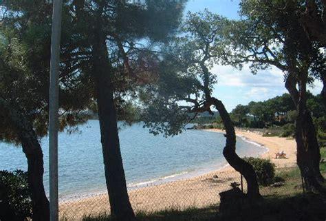 co di fiori calvi corse plage et crique les plus belles plages de corse