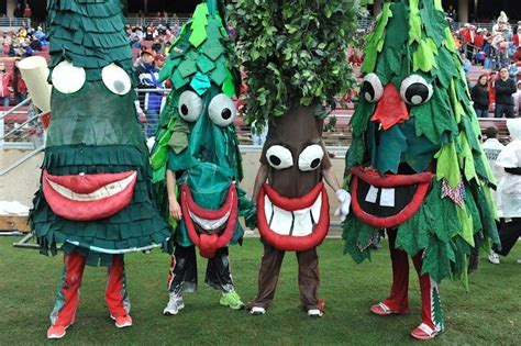the closest thing stanford has to a live mascot is el palo