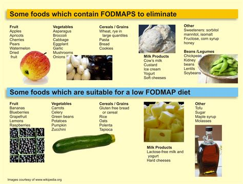 the low fodmap diet the ultimate low fodmap cookbook for beginners easy low fodmap recipes for ibs and other digestive disorders volume 1 books 8 best images of printable diet for ibs low fodmap diet