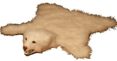 Bearskin Rugs by White Skin Rugs Skin Rugs Toning Your Home