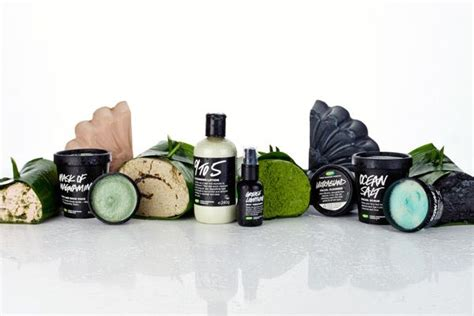 Detox Shoo Lush by How To Choose A Cleanser Our Step By Step Guide