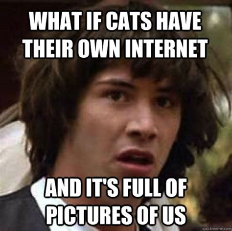 An Internet Meme - most popular internet memes