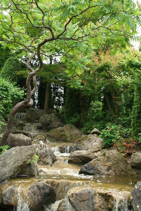 garten kaufen nrw wasserlauf japanischer garten bonn foto bild