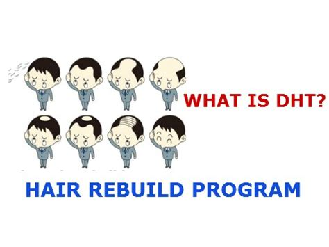 does the hair rebuild program work what is dht root hair loss cause rebuild hair program