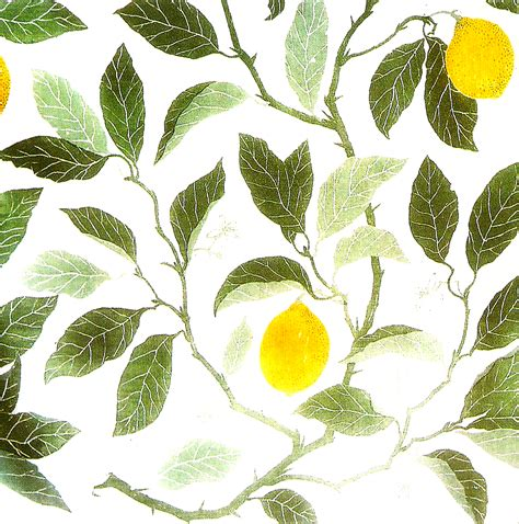 Tree Wall Murals lemon z