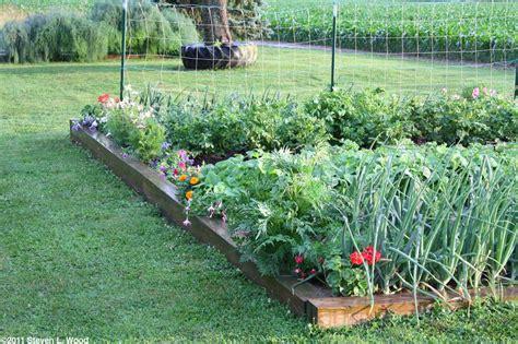 vegetable garden flowers flowers in the senior garden