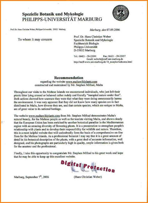 6 letter of recommendation university quote templates