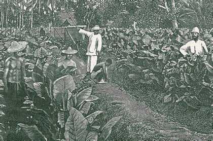 Sejarah Pergerakan Rakyat Indonesiaa Kpringgodigdo tanam paksa di indonesia artikel sejarah